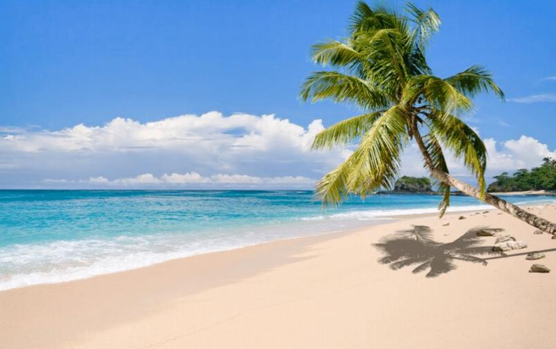 Payer Enrollment Island